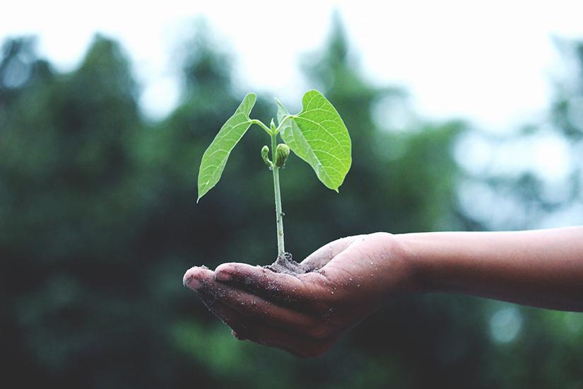Persoonlijke ontwikkeling - wat is persoonlijke groei - door Slim Concept